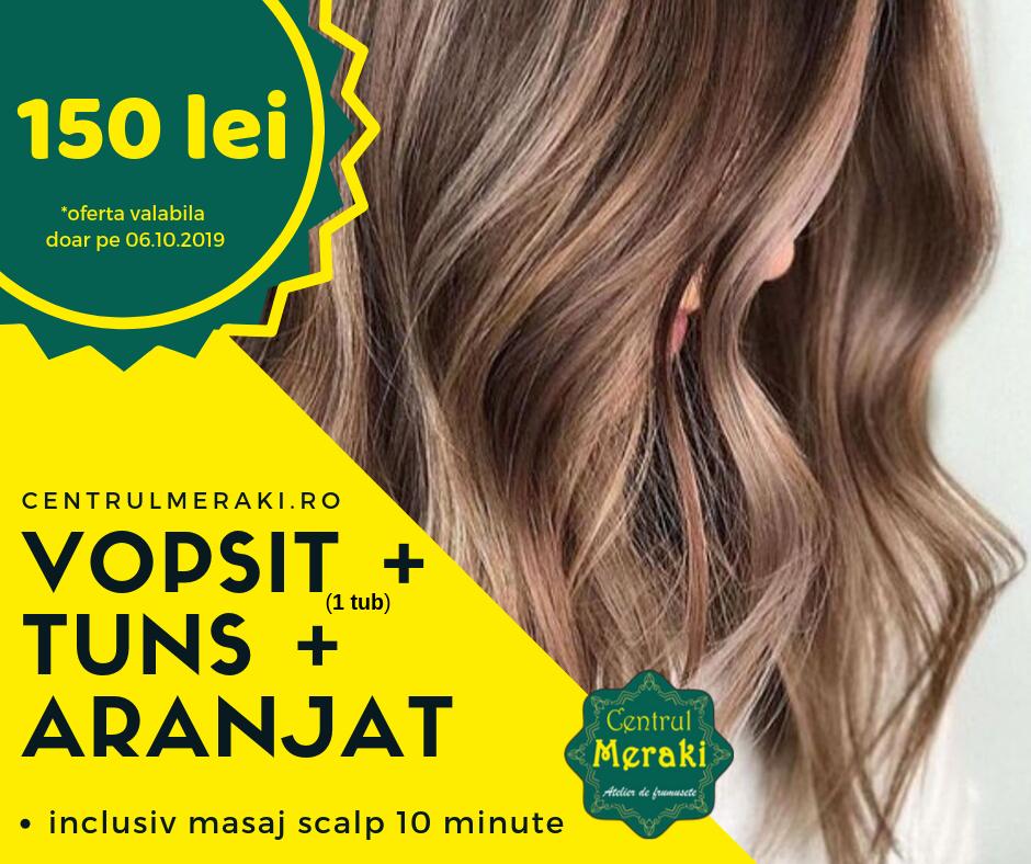 poster promotie vopsit si aranjat femei